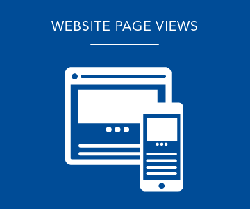 Website page views